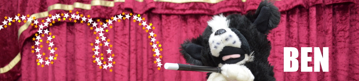 Meet Ben The Performing Dog During A Magic Zone Children's Show!